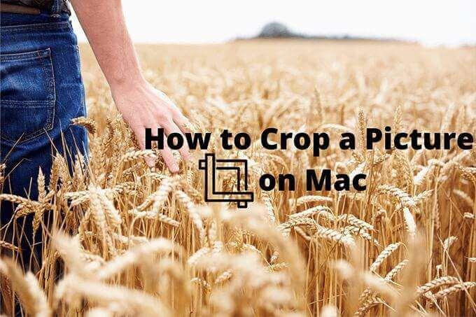 Как обрезать изображение на Mac