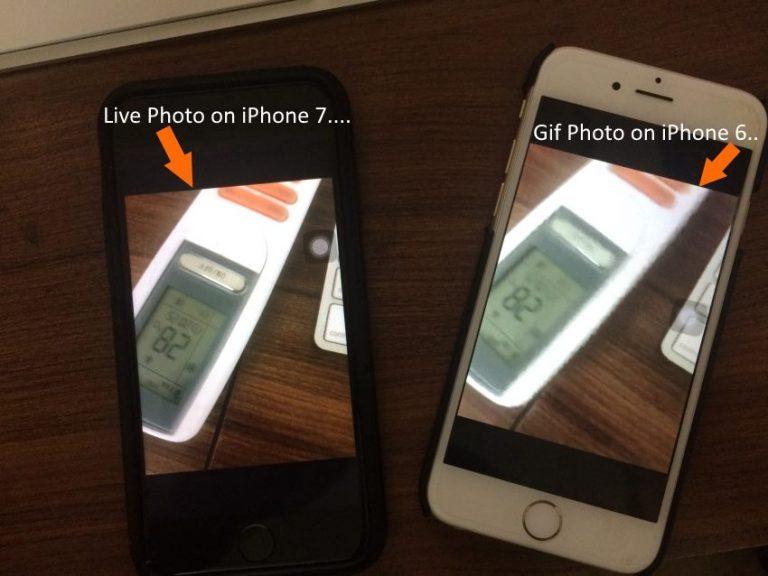 Как отправлять живые фотографии в формате GIF с iPhone 12Pro Max, 11 Pro Max, XR
