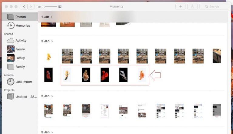 Как отобразить / скрыть изображения в приложении для фотографий в macOS Big Sur / Catalina