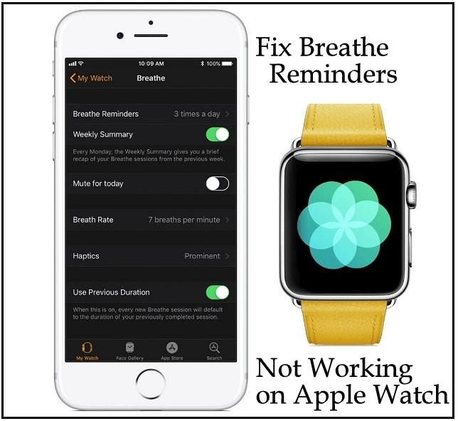 37 значений значков Apple Watch  (2021 год)