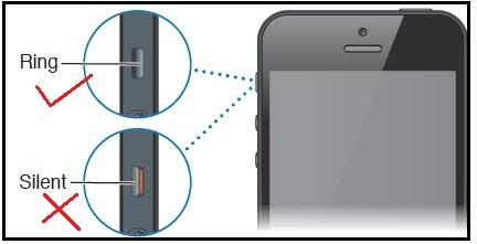 Apple iPhone SE (2021) Не работает динамик, искаженный звук
