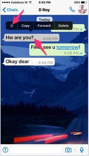 Создание закладок для сообщений WhatsApp на iPhone с помощью функции «Звездочка» [How-to]