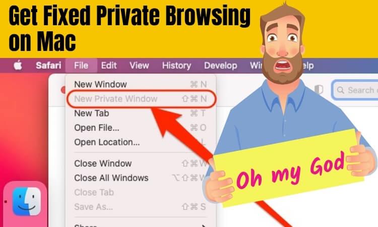 Исправлена ошибка, из-за которой кнопка приватного просмотра Safari отсутствовала ИЛИ была неактивна на Mac